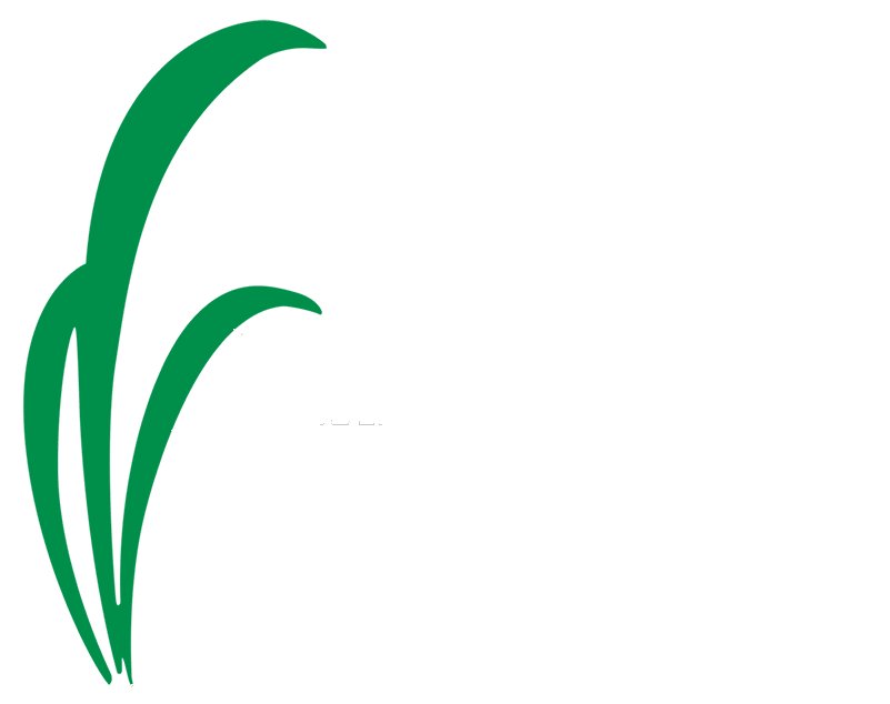 Dougs-Lawn-Landscaping-White
